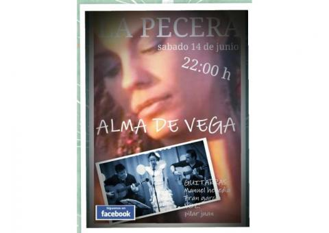 GRUPO MUSICAL FLAMENCO ROCIERO ALMA DE VEGA